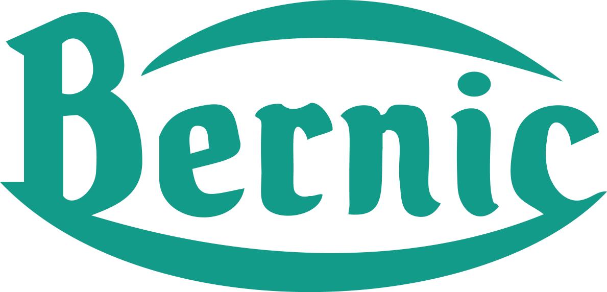 Bernic Logo
